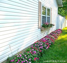 Love Of Family & Home: Curb Appeal...Evolution of The Side Yard