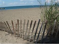 Image result for Erie PA Beach