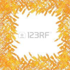 """Karta JesieÅ"""" zÅ'ote ramki pszenicy na biaÅ'ym tle Zdjęcie Seryjne - 16188082"""