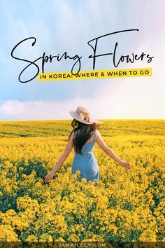 Spring Flowers in Korea: When & Where to Go (The Best Gardens, Fields and Spots) South Korea Travel, Asia Travel, Adventure Aesthetic, Travel Destinations, Travel Tips, Amazing Adventures, Travel Information, Beautiful Places To Visit, Wanderlust Travel