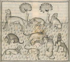 Le Livre de chasse, que fist le comte FEBUS DE FOYS, seigneur de Bearn.  Date d'édition :  1375-1400  Français 619  Folio 33v