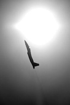 Source: 33DOSES  #air #aircrafts
