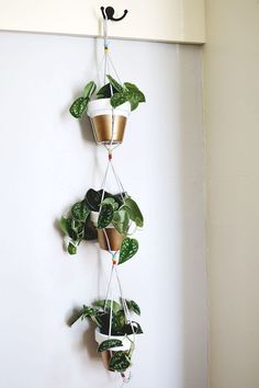 This post contains the most inexpensive decorative DIY hanging planters. These planters will definitely make your indoor garden astonishing. Diy Hanging Planter, Hanging Flower Pots, Window Hanging, Diy Planters, Hanging Baskets, Planter Ideas, Gold Planter, Decoration Plante, Diy Plant Stand