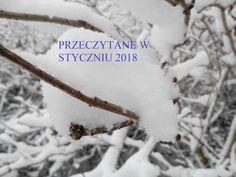 http://czytaniezfilizankaherbaty.blogspot.com/2018/01/przeczytane-w-styczniu-2018.html