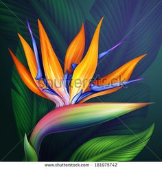 Birds of Paradise flower Acrylic painting Arte Floral, Fabric Painting, Watercolor Paintings, Birds Of Paradise Flower, Bird Of Paradise Tattoo, Acrylic Wall Art, Tropical Art, Flower Pictures, Summer Pictures