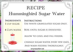 Recipe for making sugar water for hummingbirds - see how to at empressofdirt.net/hummingbird-quiz