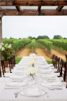 Vineyard Dining