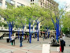 Art in the Landscape: 'The Blue Trees' Comes to Seattle