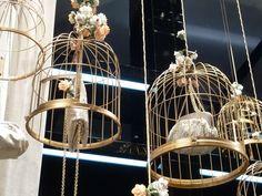 Dolce & Gabbana windows visual merchandising