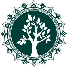 Como fazer mudas de alecrim – blog Tudo Sobre Plantas In Natura, Hotel California, Pets, Garden, Nature, Raised Vegetable Gardens, Small Vegetable Gardens, Seed Starting, Companion Planting