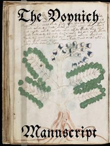 "This ebook is the complete reproduction of the preserved Voynich Manuscript, formatted for high resolution colour ebook reader displays. The Voynich manuscript, also known as ""the world"
