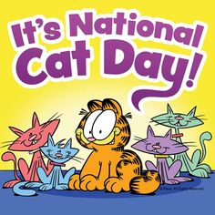 Hug your cat.then make your cat a pan of lasagna. It's the law. Garfield Pictures, Garfield Quotes, Garfield Cartoon, Garfield And Odie, Garfield Comics, Cartoon Cats, National Cat Day, I Salute You, Cat Quotes