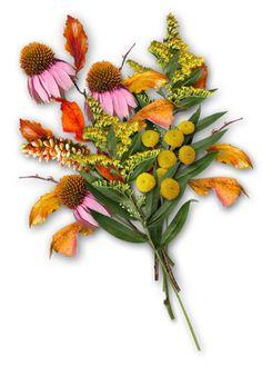 Podzimní dekorace 2 | Tvoření Fall Decor, Autumn, Plants, Blog, Fall, Blogging, Plant, Planting, Planets