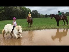 A Little Girl Horse Playing in the Mud - YouTube
