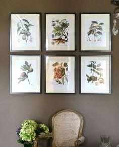 wall decor botanical prints traditional timeless, home decor, repurposing upcycling, wall decor