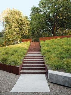 Landscape Design for All Climates - Photo 3 of 12 -