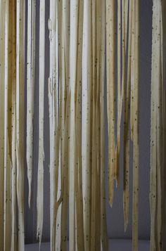 handmade pasta