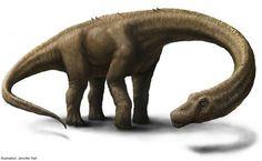 Dino Drawing