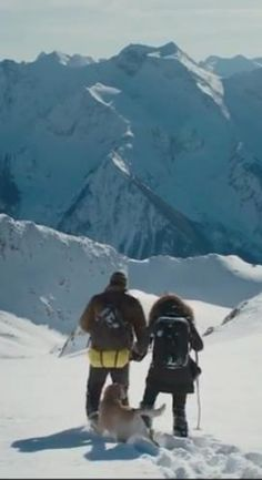 Watch The Mountain Between Us Full Movie HD 1080p