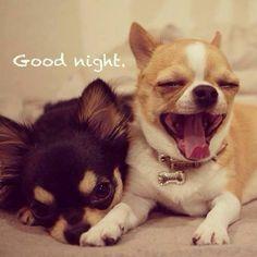 Same here,full day,have a good sleep.