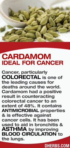 JOJO POST FOREVER YOUNG: YES IT IS LOVELY CARDAMOM.
