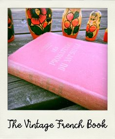 VINTAGE : J. Vianey - Les prosateurs du XVIe siècle - Livre ancien en français