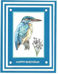 kingfisher Happy Birthday