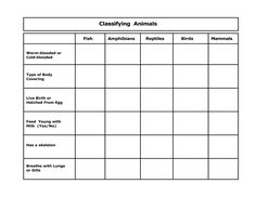 animal classification worksheet - Google Search