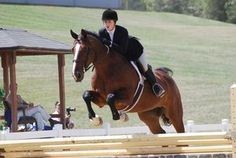 The equestrian program at Bridgewater College is awesome.