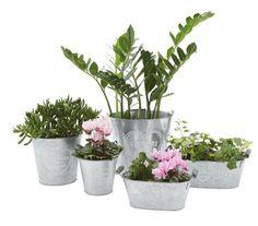 Pflanzentopf Flowers - Wohnaccessoires - Produkte