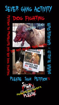 """Picture Dog fighting is a form of blood sport in which game dogs are made to fight, sometimes to the death. It is illegal in most developed countries. Dog fighting is used for entertainment and may also generate revenue from stud fees, admission fees and gambling. Dog fighting is a blood sport!"" - ""Petition, report, prosecute, this it a barbaric cruel non-sport!"""