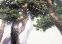 Landscape Paintings, Plants, Outdoor, Trees, Asian, Cooking, Backgrounds, Board, Rural Area