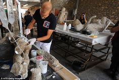 Pompeii restoration begins on the entombed bodies from Vesuvius eruption | Daily Mail Online