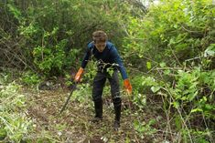 A volunteer helps to clear alien vegetation Galapagos Islands, Gap Year, Bradley Mountain, Conservation, Time Out, Sabbatical Leave, Canning