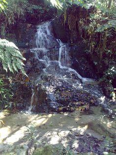 Dica de Destino   Conheça a Serra do Japi, uma parcela de  Mata Atlântica preservada e em Jundiaí (SP).  Foto enviada por Anderson Luís