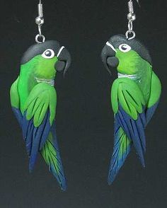 Nanday Conure (looks like Black Capped!) earrings at featheredfashions.com