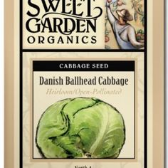 Danish Ballhead Cabbage  from The Scribbled Hollow for $2.89 on Square Market