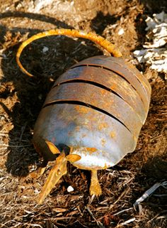 handcrafted metal rusty armadillo garden and yard art
