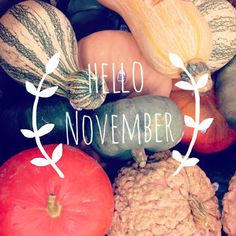 November  | goodbye october, hello november.