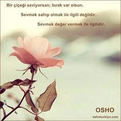 :))Sevmek çiçekli bir duygudur; ilgiyle gelişir, güzelleşir...