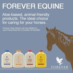 The Forever opportunity has helped millions of people all over the world look better, feel better and live the life of their dreams. Discover Forever's Incentives. Forever Freedom, Aloe Drink, Forever Aloe, Forever Living Products, Health Challenge, Aloe Vera Gel, Feel Better, Personal Care, Pet Lovers