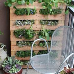 Small space gardens http://www.apartmenttherapy.com/gardening-without-a-garden-10-ideas-for-your-patio-or-balcony-renters-solutions-167221