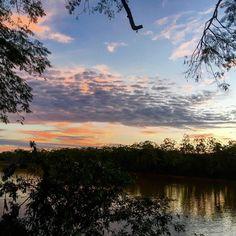 Reserva de Biosfera Yasuní, el lugar más biodiverso del planeta. #Yasuní #RBY #AllYouNeedIsEcuador #Amazonía #Napo #LaPuchaQueValeLaPenaEstarVivo