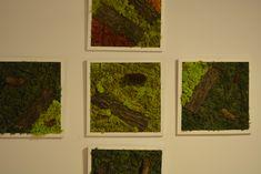 #tablou #licheni #moss