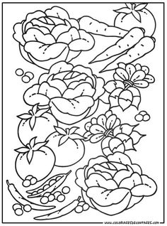 printable fruits & vegetables coloring pages Vegetable Coloring Pages, Free Coloring Pages, Coloring Sheets, Hand Coloring, Adult Coloring, Coloring Book, Hand Embroidery Designs, Embroidery Art, Embroidery Patterns