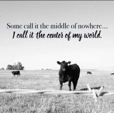 Love of the country farm life~ Cow Quotes, Farm Quotes, Country Girl Quotes, Horse Quotes, Country Girls, Girl Sayings, Country Living Quotes, Smile Quotes, Country Music