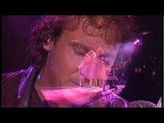 Marco Borsato In Concert 12 Top Hits (Live)