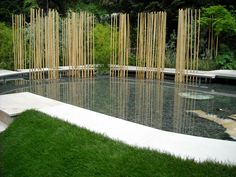 chelsea flower show 2008  http://www.fotothing.com/marty001/photo/604127d83ffc795069642d9bc784a13d/