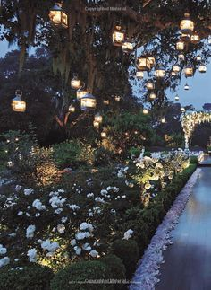 Like a fairy land, lights lighting up the garden makes it look so dreamy. I would love some red accents for an evening wedding to make it more romantic.