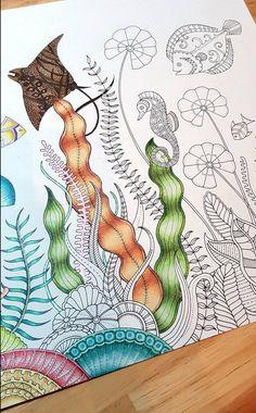 Johanna Basford | Emily Laughlin | Inspirational Coloring Pages #inspiração…